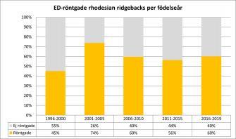 <p>Andel ED-röntgande av antal svenskfödda rhodesian ridgebacks fördelat per hundarnas födelseår. Uppdaterad 2019-12-31.</p>
