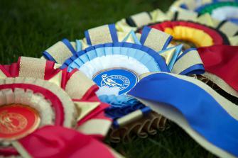 <p>Fina rosetter till placerade hundar på SRRS vinnarlistor.</p>